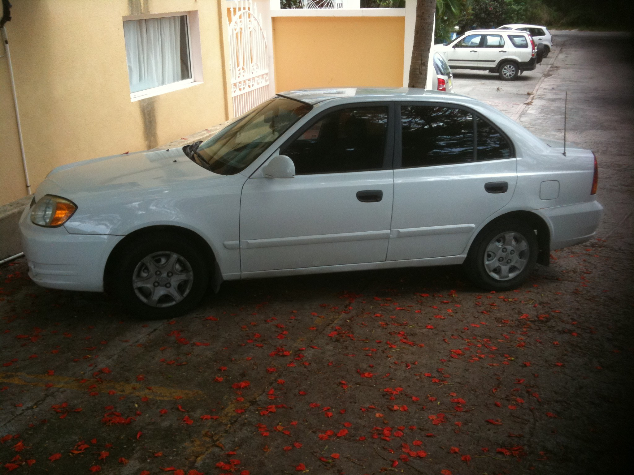 car for sale hyundai accent 2004 american university of the caribbean auc. Black Bedroom Furniture Sets. Home Design Ideas