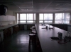 One of the Labs