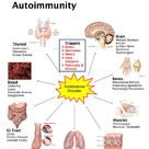 How Inflammation Affects Every Aspect of Your Health   Venus Perez of Utopia Pioneers Blog
