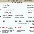 Classification of Carbohydrates, together with lipids, proteins and nucleic acids
