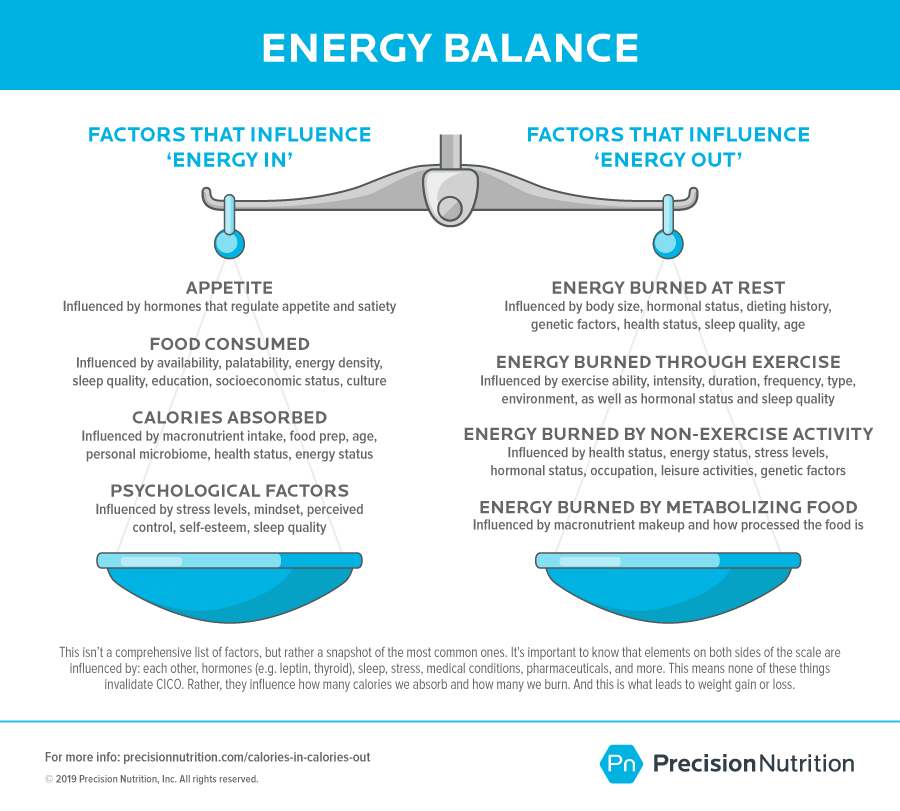 Calories In, Calories Out: The Truth about Energy Balance and Fat Loss