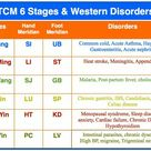 TCM 6 Stages and Western disorders