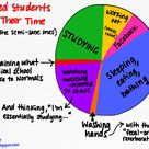 The Med Student's Time Pie Chart / How med students spend their time  #medschool #medstudent