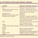 Functions of Peripheral Adrenergic Receptor Subtypes