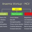 microcytic anemia macrocytic - Google Search