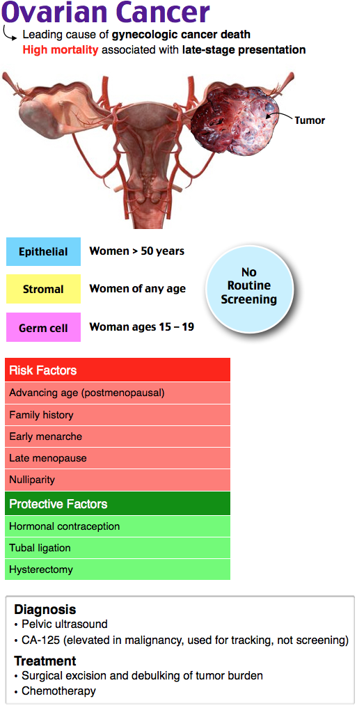 Ovarian Cancer 90% epithelial origin  Most lethal gynecologic malignancy 55 to 65 years Risk factors