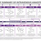 Guide to Intravenous Anaesthetics