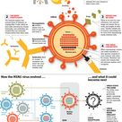 Ever wonder how the flu virus makes you sick?  This fantastic interactive by Time will help you unde