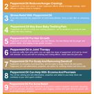 47 Benefits And Uses Of Peppermint Oil