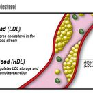 Decreasing your consumption of saturated fats can reduce your low-density lipoprotein (LDL) choleste