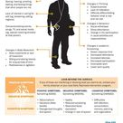 EPION: Early Psychosis Intervention, printable infographic infosheet (English) on the Anatomy of a F