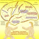 Your brain on Tai Chi