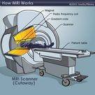 MRI Magnets: the Major Players