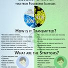 What Causes a Foodborne Illness: Virus or Bacteria?