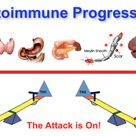 Autoimmune progression occurs when immune system imbalance is not addressed with Hashimoto's Thyroid