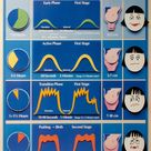 The Stages of Labor Chart