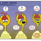 Chronic kidney disease (CKD) is progressive and irreversible. It is defined as either kidney damage
