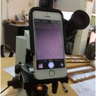 Using an iPhone connected microscope and FaceTime for telecytology.