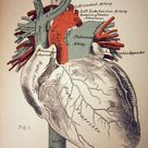 """""""There's nothing more inspiring than the complexity and beauty of the human heart"""""""
