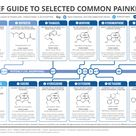 Brief Guide to Common Painkillers