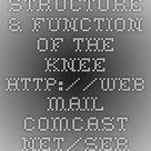 Structure & Function of the Knee - http://web.mail.comcast.net/service/home/~/?auth=co&loc=e
