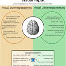 Visual Input and Sensory Processing Disorder