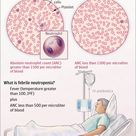 What is Febrile Neutropenia?