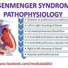 Eisenmenger syndrome pathophysiology