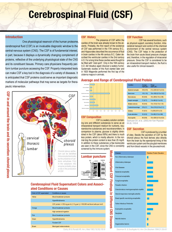 Cerebrospinal fluid (CSF) at glance.