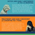 5 Stages of Recovery