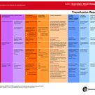Blood Transfusion Products   Blood transfusion reaction chart