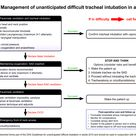 Management of unanticipated difficult tracheal intubation in adults