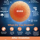 72% of women don't know when they ovulate