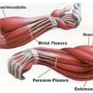 Self myofascial release for forearms #selfcare
