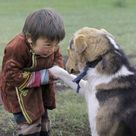 Finding Neverland | cute-overload: I can just imagine this beautiful...