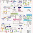 Zoom out - Pharmacotherapy: Drug-drug Interactions Concept Map | Pharmacokinetic Drug Interactions |
