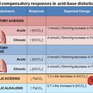 chronic respiratory alkalosis compensation