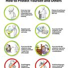 Influenza+Prevention | Swine flu or H1N1 Type A Influenza ? Symptoms, Prevention and ...