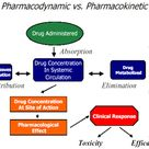 pharmacokinetic processes - Yahoo Image Search Results