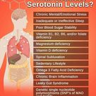 Reducing SEROTONIN to in Levels