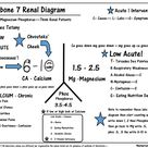 This is the Seventh of my series explaining the Renal Fishbone Diagram with the Calcium Magnesium an