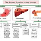 The human digestive sustem tumors: Oncoproteins and Proteins