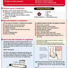 Anaphylaxis Posters to Download