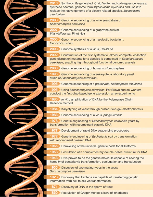 The History of Genetics research: Selected milestones that mark the path of research.