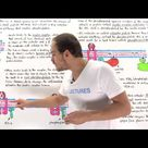 Insulin Signal Transduction Pathway