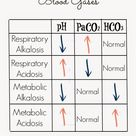 Nurse Nightingale: {ABGs} Arterial Blood Gases: The Ultimate Beginner's Guide. How to quickly assess