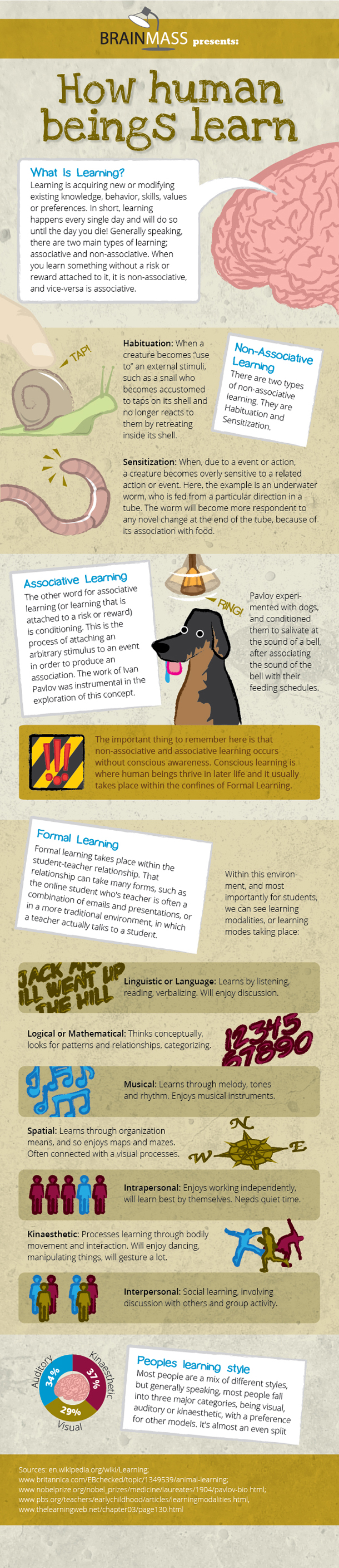 How Human Beings Learn [INFOGRAPHIC]