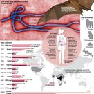 Fact file on the Ebola virus that has killed more than 670 people in an ongoing outbreak in West Afr