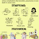 flu symptoms | Swine Flu (H1N1) | Symptoms & Prevention