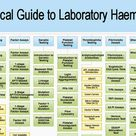 Medical Laboratory and Biomedical Science: A Practical Guide to Laboratory Haemostasis